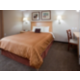 Queen Bed Guest Suite