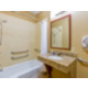 ADA/Handicapped Accessible Guest Bathroom with Transfer Tub