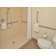 Wheelchair Accessible Bathroom Roll-in Shower
