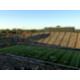 Inside Autzen Stadium