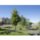 Candlewood Suites offers beautiful views of the Snake River