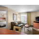 One-BR Suite