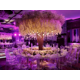 Nabatean Ballroom; Your Ideal Choice for a Memorable Wedding