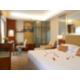 Guest Room (1 King Bed Premier Room)