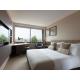 Chambre Standard avec 1 lit Double, vue sur la ville ou le jardin