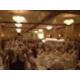 Crowne Plaza Grand Rapids Banquet Room | Grand Rapids, MI