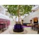 Real tree in the atrium creates a unique atmosphere