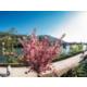 Schönes Heidelberg - Alle Sehenswürdigkeiten ganz nah