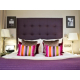 Suite Room Feature