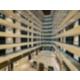 Caractéristique de l'hôtel