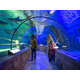 Sea Life Aquarium - courtesy of Bloomington CVB