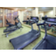 Modern Facility with Cardio and Free Weights