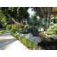 Scenery / Landscape