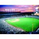 Baseball fans enjoy the games at Coors Field