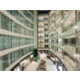 A warm welcome to Holiday Inn Dubai-Al Barsha Skylight Atrium