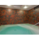 Holiday Inn Hotel Dublin-Pleasanton Indoor Spa