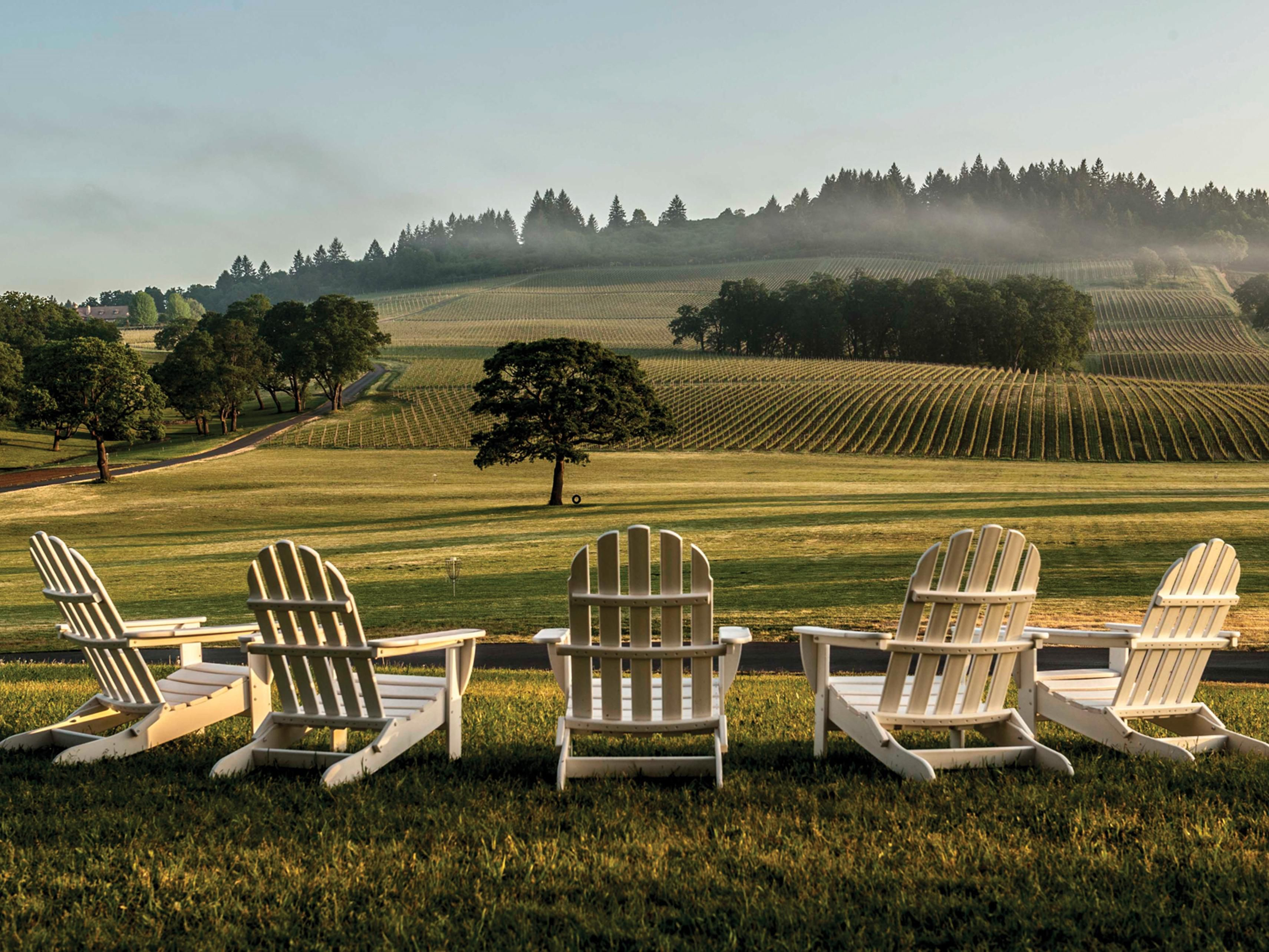 We are centrally located to all Willamette Valley vineyards