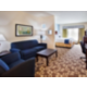 Holiday Inn Express & Suites Atlanta Aprt West-King Suitewith Sofa