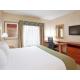 King Bed Holiday Inn Express Auburn Hills Near The Palace