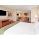 Executive King Suite Holiday Inn Express Auburn Hills