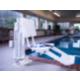 Guest Pool Lift ADA/ Handicapped Accessible