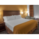 Holiday Inn Express King Bed