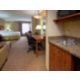 King Executive Suite with wet bar and microwave and fridge