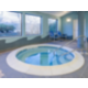 Indoor Whirpool Spa