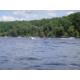 Pickwick Lake