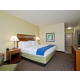 Holiday Inn Express and Suites Denver East King Leisure Free WiFi
