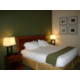 1 King Bedded Suite