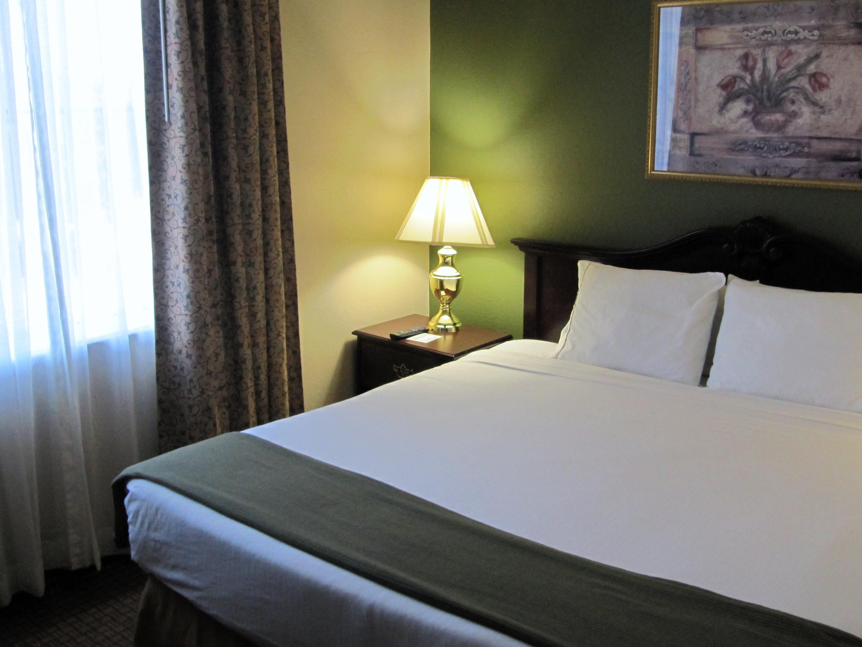 Humble Bush Airport Guest Room