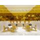 Holiday Inn Express & Suites Hyderabad Gachibowli - Lobby Bar