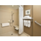 ADA/Handicapped Guest Bathroom with roll-in shower