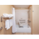 ADA/Handicap accessible Guest Bathroom with mobility tub