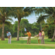 Play where the champions play at Naples FL golf courses