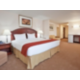 Wheelchair Accessible King Suite