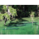 Just six mile from the manatee at Blue Springs State Park