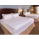 2 king bed