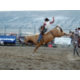 Red Desert Round Up Rodeo in July is a must see
