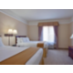 Two Queen Bed Executive Suites