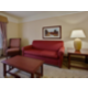 King Master Suite, 925 sq. ft. Apartment with Kitchen
