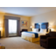 King Executive Suite with Sofa Bed