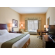 King Bed Guest Room Holiday Inn Express Tampa Busch Gardens
