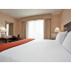 King Bed Guest Room with Business Traveler Amenities