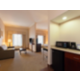 Executive Suite Living Area features microwave and refrigerator