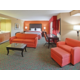 King Jacuzzi Presidential Suite w/Sofa Bed