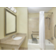 ADA/Handicapped accesible Guest Bathroom with mobility tub