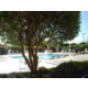 Our swimming pool is great for families or sports groups.