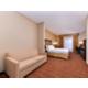 1 Queen Bed Handicap Accessible Suite